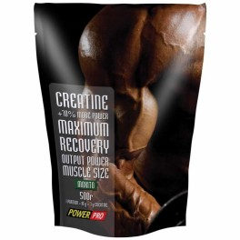 Power Pro Creatine 500 гр